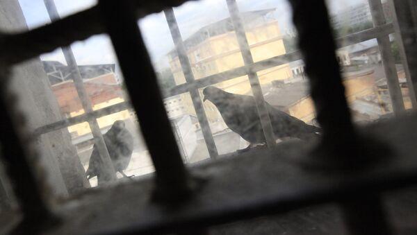 Решетка на окне - Sputnik Узбекистан