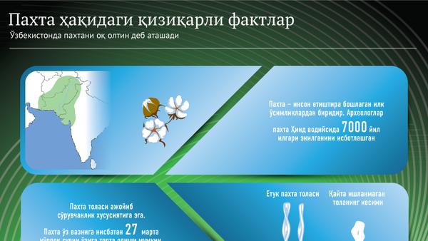 Paxtaga oid qiziqarli faktlar - Sputnik Oʻzbekiston