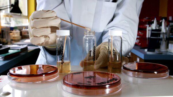 Проведение анализов в биохимической лаборатории - Sputnik Ўзбекистон