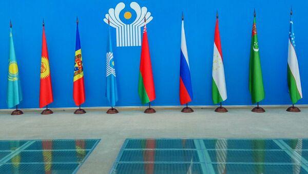 Флаги стран-участниц СНГ - Sputnik Узбекистан