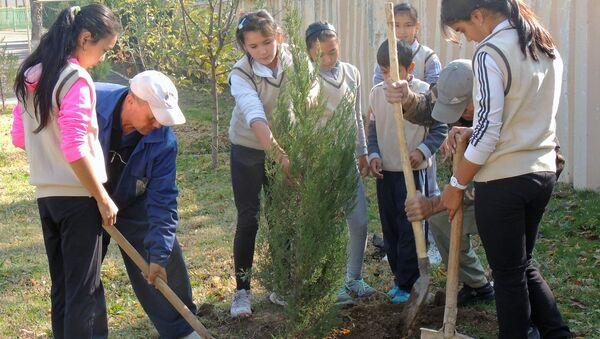 Посадка саженцев  в Республиканской теннисной школе олимпийского резерва - Sputnik Узбекистан