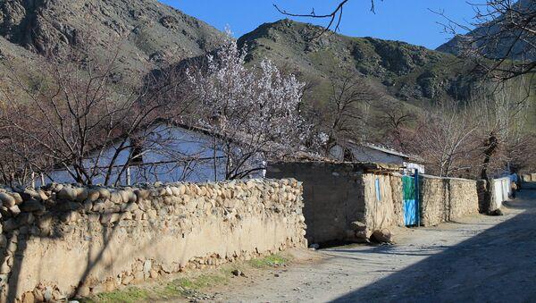 Сельский дом в Узбекистане - Sputnik Узбекистан