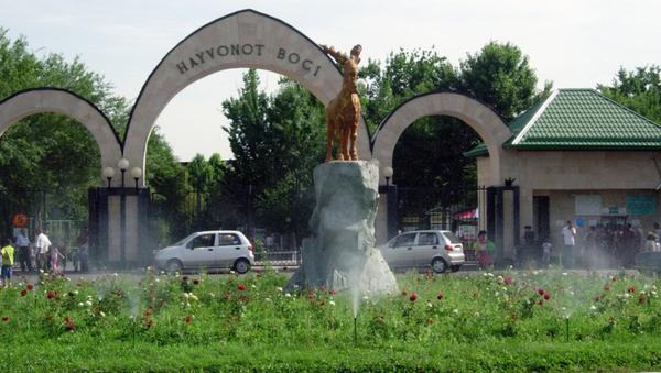 Ташкентский зоопарк - Sputnik Узбекистан