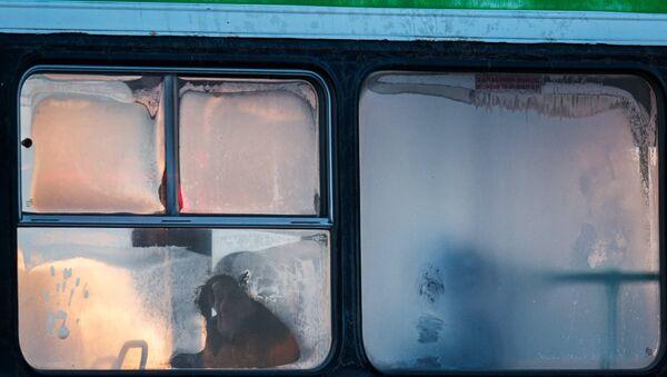 Okna avtobusa vo vremya silnogo - Sputnik Oʻzbekiston