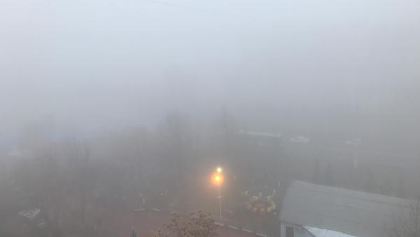 Тошкентда қуюқ туман - Sputnik Ўзбекистон