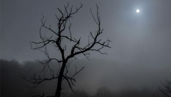 Туман - Sputnik Ўзбекистон
