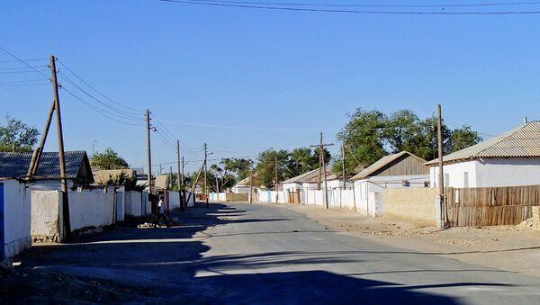 Улица в сельской местности в Узбекистане - Sputnik Ўзбекистон