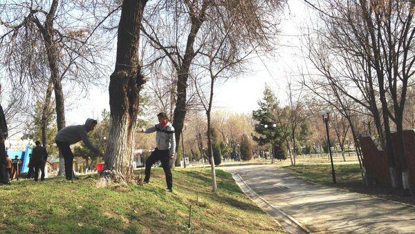 Abdulla Qodiriy bogʻida hashar - Sputnik Oʻzbekiston