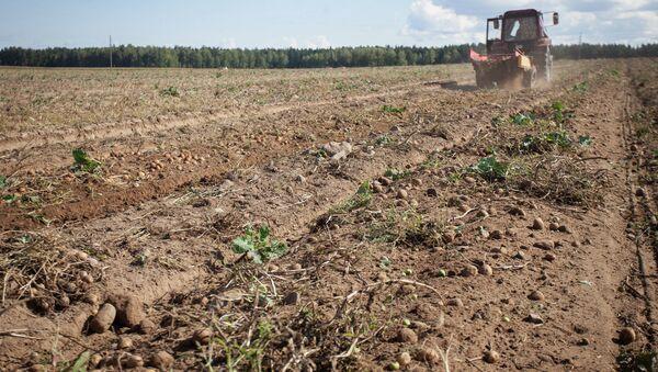 Сельское хозяйство - Sputnik Ўзбекистон