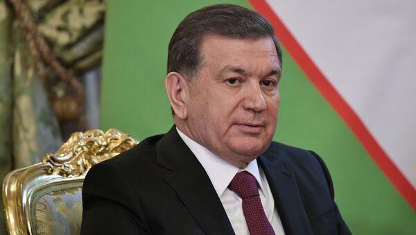 Prezident RF V. Putin vstretilsya s prezidentom Uzbekistana SH. Mirziyeyevыm - Sputnik Oʻzbekiston