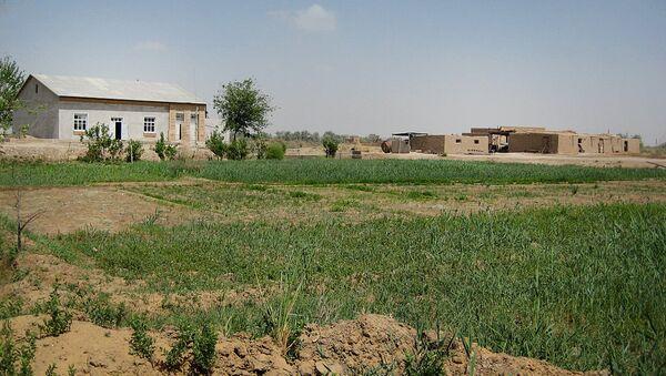 Типичное дехканское хозяйство в Узбекистане  - Sputnik Узбекистан