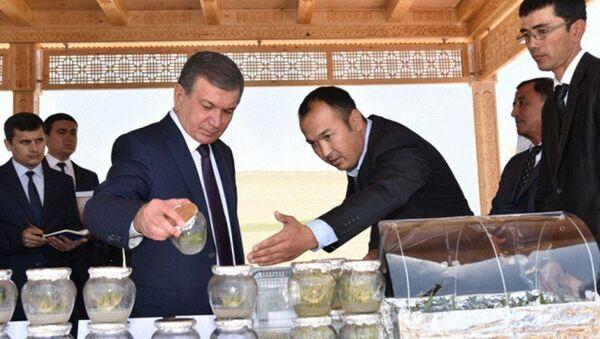Шавкат Мирзиёев ознакомился с новыми технологиями выращивания семян - Sputnik Ўзбекистон
