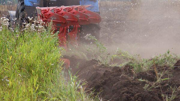 Трактор с плугом пашет землю - Sputnik Узбекистан