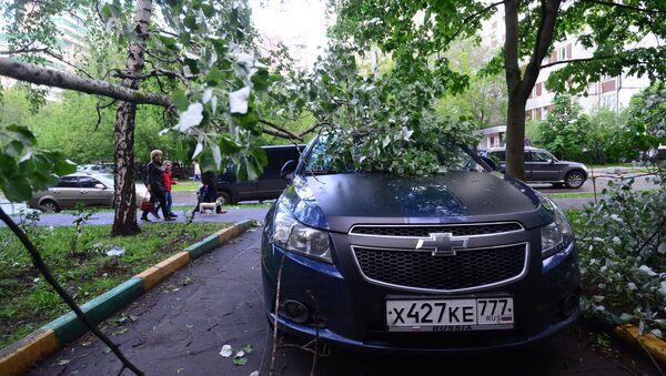 Последствия урагана в Москве - Sputnik Ўзбекистон