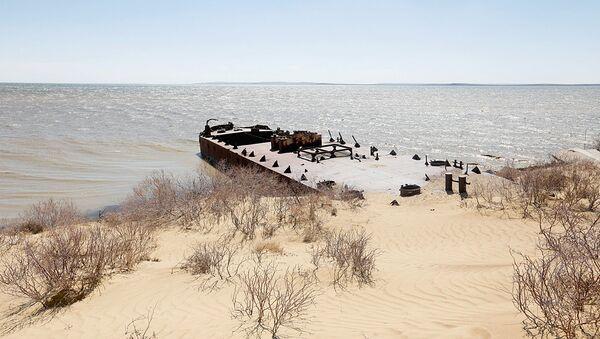 Аральское море - Sputnik Узбекистан