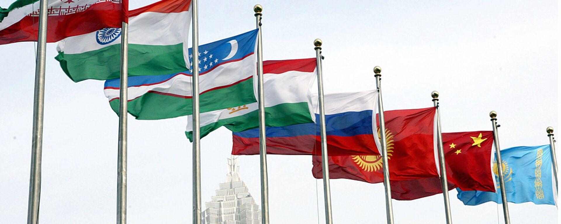Флаги стран-участниц ШОС - Sputnik Узбекистан, 1920, 19.06.2020