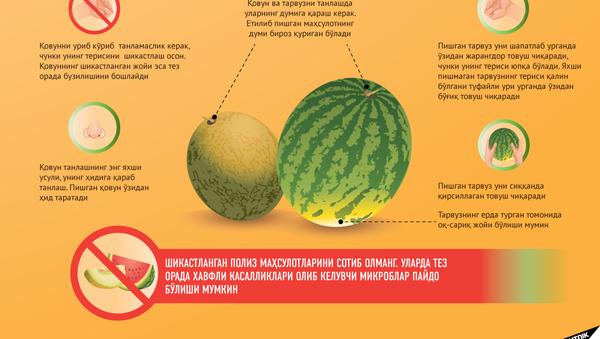 Қовун тарвуз - Sputnik Ўзбекистон