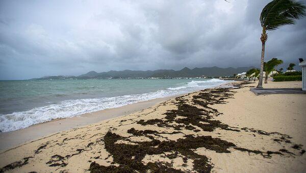 Ураган Ирма надвигается на пляж на острове Сен-Мартен в Карибском море. 5 сентября 2017 - Sputnik Ўзбекистон