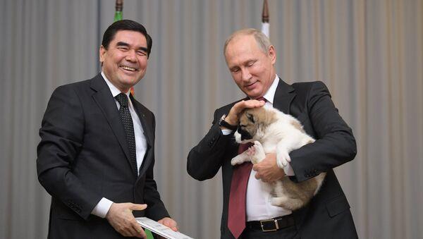 Президент РФ В. Путин встретился с президентом Туркмении Г. Бердымухамедовым - Sputnik Ўзбекистон