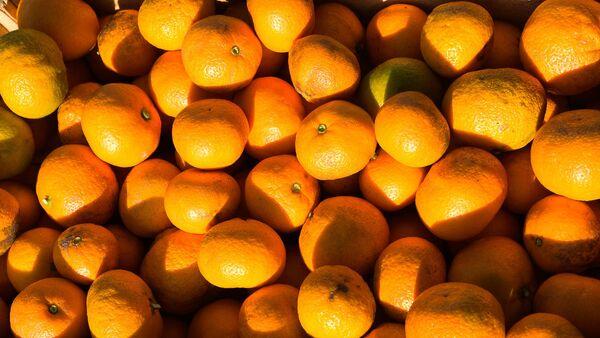 Сбор урожая мандаринов в Гулрыпше - Sputnik Ўзбекистон