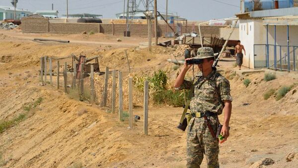 Пограничник на участке границы, архивное фото - Sputnik Ўзбекистон