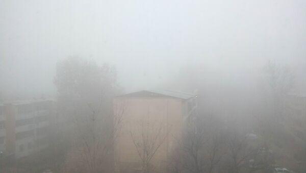 Ташкент накрыл густой туман - Sputnik Ўзбекистон