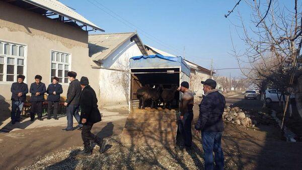 В Узбекистане собирают помощь семьям сгоревших в автобусе в Казахстане - Sputnik Ўзбекистон