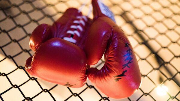 Боксерские перчатки, архивное фото - Sputnik Узбекистан