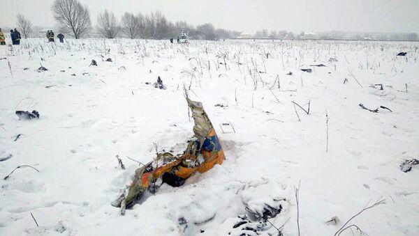 На месте крушения самолета Ан-148 в Московской области - Sputnik Узбекистан