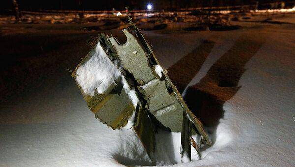 Часть самолета Ан-148 Саратовские авиалинии Ан-148, разбившегося после взлета из московского аэропорта Домодедово - Sputnik Ўзбекистон