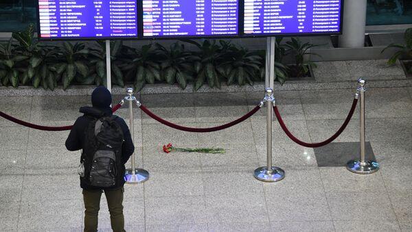 Situatsiya v aeroportu Domodedovo - Sputnik Oʻzbekiston