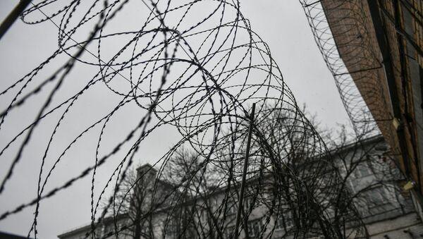 Колючая проволока - Sputnik Узбекистан