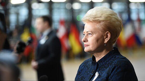 Президент Литвы Даля Грибаускайте принимает участие в работе Европейского совета в Брюсселе - Sputnik Узбекистан
