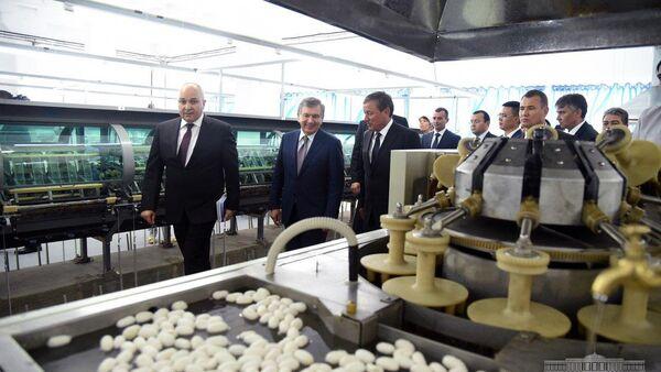 В Андижанском районе заработало предприятие по переработке коконов шелкопряда и производства готовой продукции. - Sputnik Узбекистан