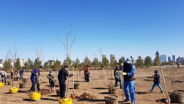 В память о сгоревших узбекистанцах под Актюбинском высадили 52 дерева - Sputnik Ўзбекистон