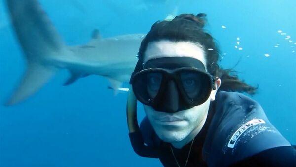 Фридайвер Брайан Руло встретился с акулами лицом к лицу - Sputnik Узбекистан