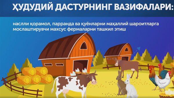 О программе Каждая семья - предприниматель - Sputnik Ўзбекистон