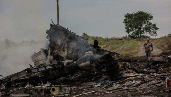 Крушение малайзийского Boeing на Украине - Sputnik Ўзбекистон