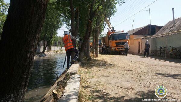 В Ташкенте приводят в порядок каналы - Sputnik Узбекистан