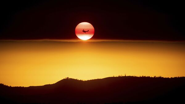 Самолет на фоне заходящего солнца  - Sputnik Ўзбекистон