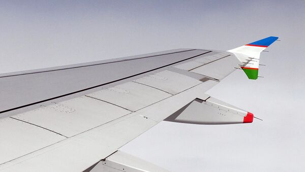 Крыло самолета - Sputnik Узбекистан