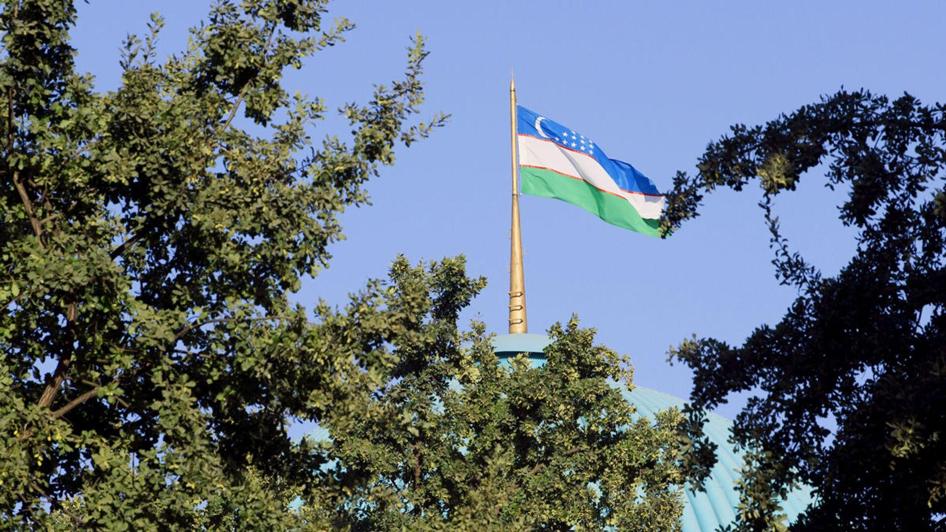 Флаг Узбекистана - Sputnik Ўзбекистон, 1920, 30.09.2021