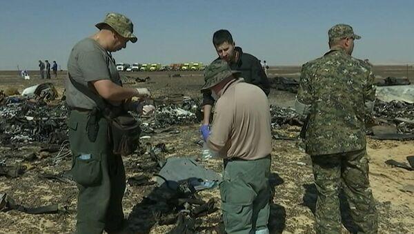 Сотрудники МЧС РФ собирали материалы для следствия на месте крушения A321 - Sputnik Узбекистан