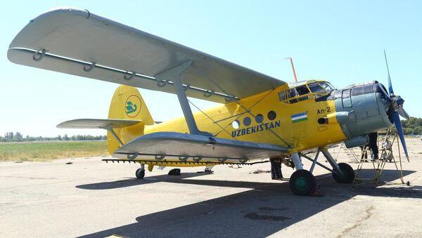 Самолёт Ан-2 на аэродроме Сергели - Sputnik Ўзбекистон