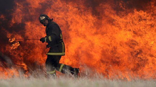 Учения по ликвидации последствий лесных и торфяных пожаров в Подмосковье - Sputnik Узбекистан