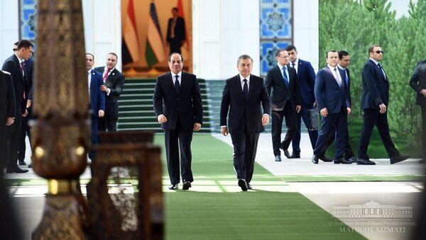 В резиденции Куксарой состоялись переговоры Президента Республики Узбекистан Шавката Мирзиёева и Президента Арабской Республики Египет Абдулфаттаха ас-Сиси - Sputnik Ўзбекистон