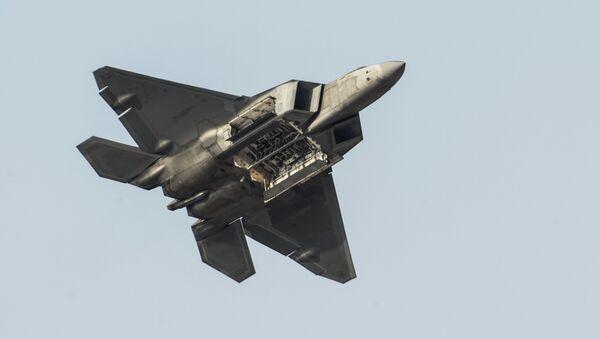 AQShning F-22 qiruvchi samolyoti Dubai Airshow-2015 koʻrgazmasida - Sputnik Oʻzbekiston