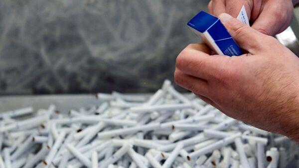 Proizvodstvo sigaret - Sputnik Oʻzbekiston