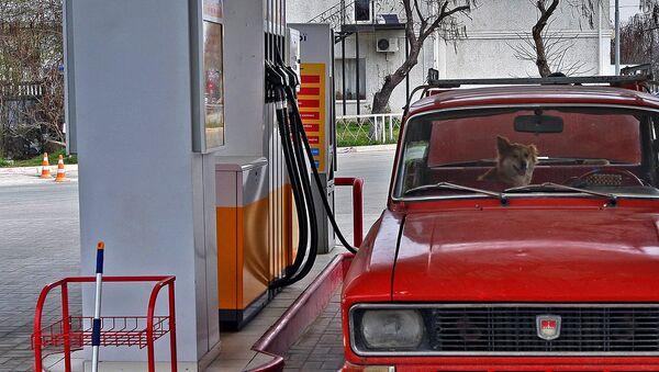 AYOQSH turgan avtomobil - Sputnik Oʻzbekiston